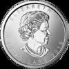 1-oz-canadian-platinum-maple-leaf--random-year-_reverse