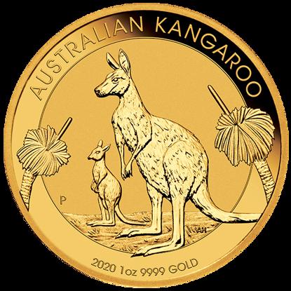 2020-1-oz-australian-gold-kangaroo_obverse
