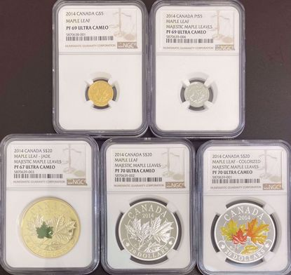 Picture of 2014 5pc Majestic Canadian Maple Leaf Set Proof UCM NGC with $5 Gold, $5 Platinum, (3) $20 Silver